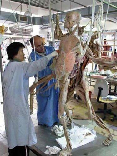 Bu vücutlar nasıl hazırlanıyor?