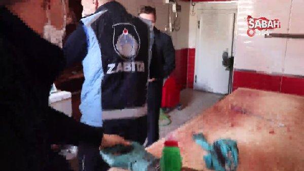 Düzce'de kaçak kesim yapanlara şok baskın | Video