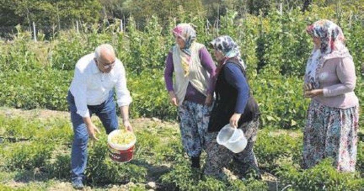 Yöre kadınlarına istihdam desteği