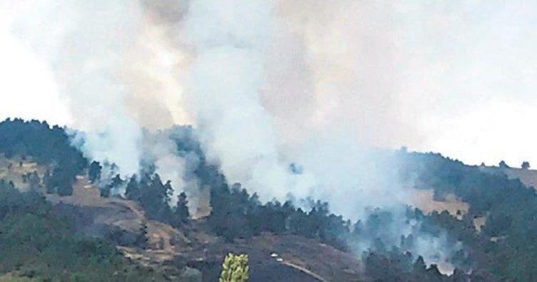 Yozgat Eskişehir ve Muğla'da yangın