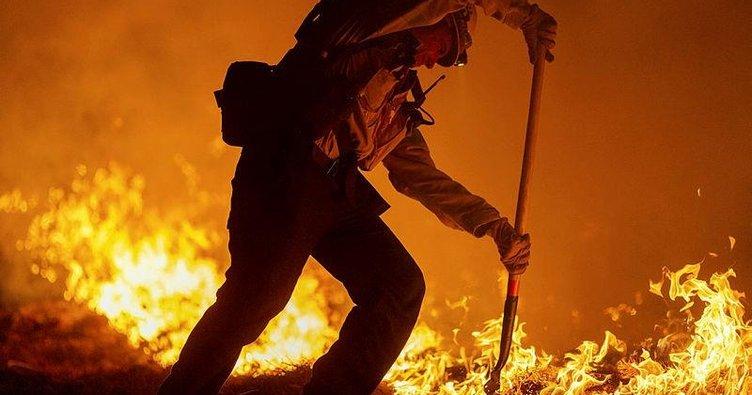 ABD'deki orman yangınlarında ölü sayısı 33'e çıktı