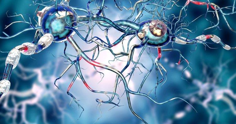 Epilepsi hastalığına nasıl müdahale edilmeli?
