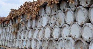 Hizan'ın karakovan balı Avrupa pazarında