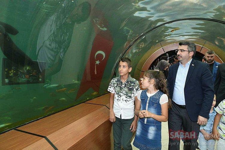 Türkiye'de bir ilk! 15 Temmuz'a özel su altı sergisi