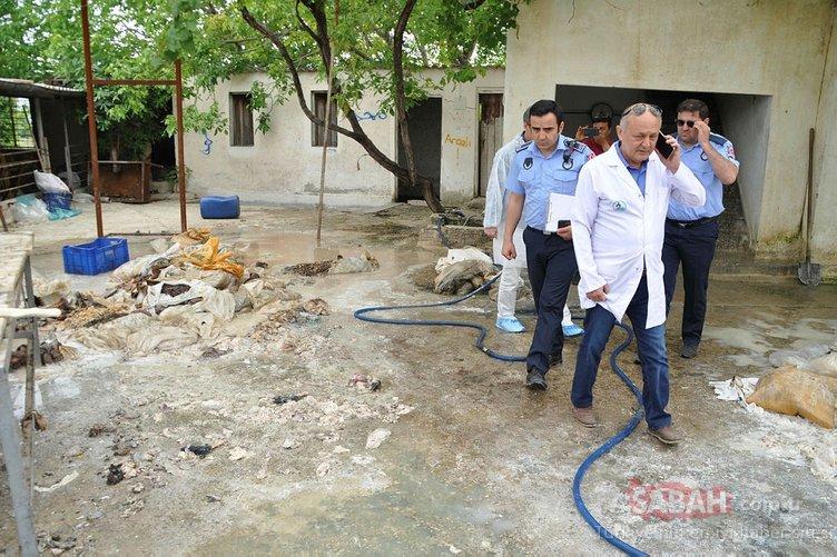 Denizli'de zabıtalar, kaçak sakatat işlenen tesise kokudan giremedi