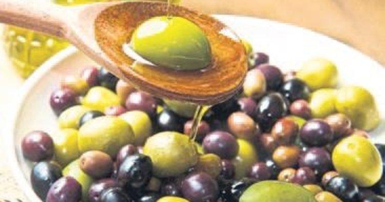 Sofralık zeytine prim desteği