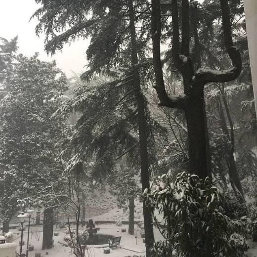Ünlülerin gözünden kar manzaraları