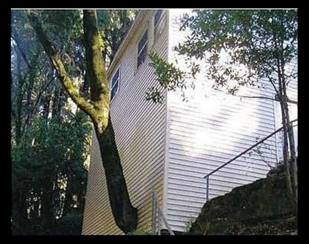 Çılgın mimarlar, çıldırtan hatalar!