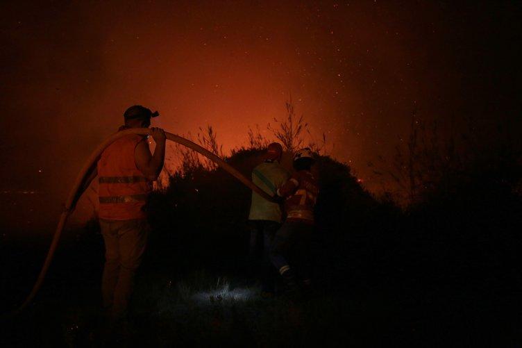 Portekiz'de büyük orman yangını!