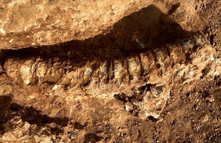 890 milyon yaşında!
