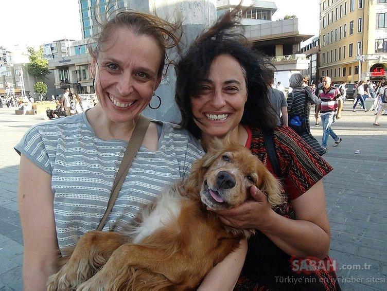 Ödüllü köpek, Taksim metrosunda bulundu