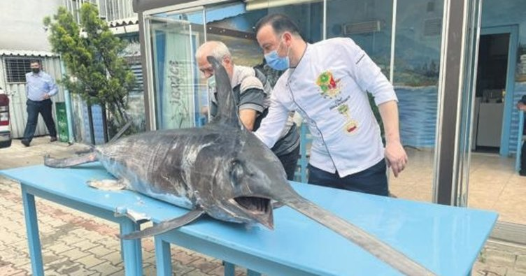 Saros'ta 88 kg'lık kılıç balığı yakalandı
