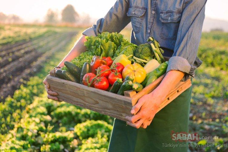 Tansiyona iyi gelen mucizevi besinler nelerdir? İşte tansiyonu dengeleyen besinler