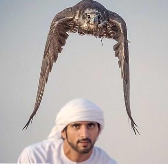 Dubai Prensi'nin birbirinden çılgın fotoğrafları!