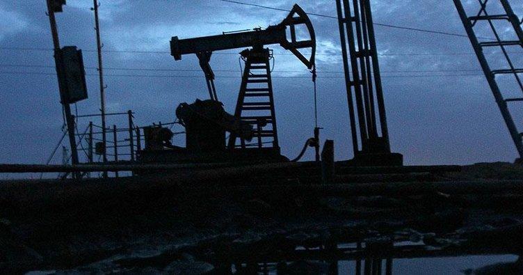 Doğu Türkistan'da 1 milyar tonluk petrol rezervi bulundu