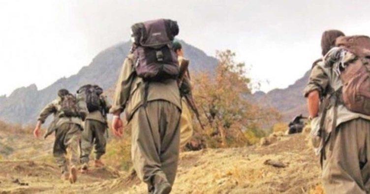 PKK'nın dağ kadrosundan biri tutuklandı