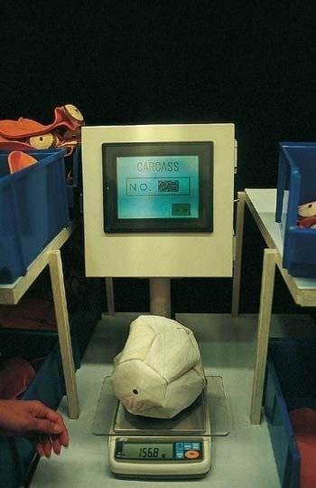 Futbol topu nasıl yapılır?