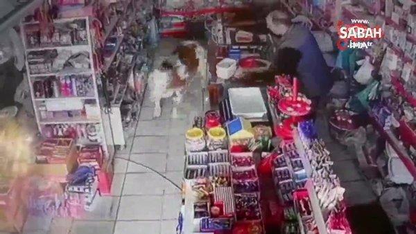 Dana, markete girdi, market sahibi neye uğradığını şaşırdı