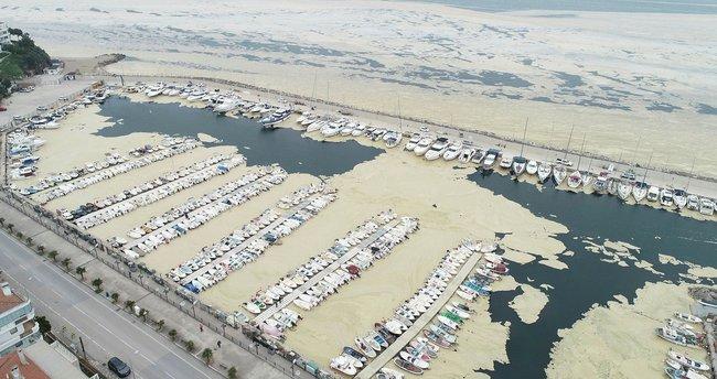Pendik Marina'yı deniz salyaları kapladı! Manzara korkunç