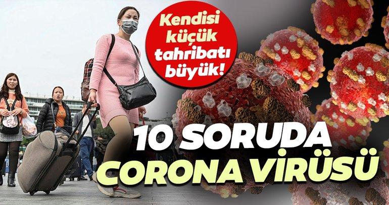 Corona virüs nedir? Belirtileri nelerdir? İşte 10 soruda corona virüsüne dair her şey...