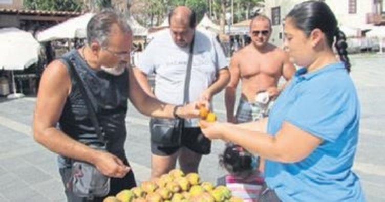 Antalya'da Frenk yemişiyle serinlik