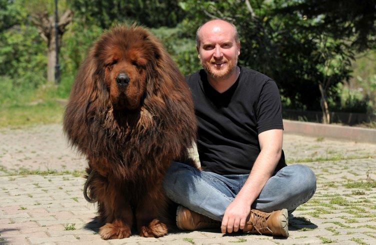 12 ülkeye cins köpek satıyor; değeri 300 bin TLolan da var