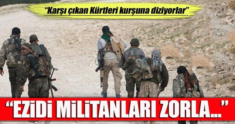 PKK, Sincar'dan Afrin'e militan gönderiyor