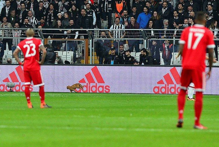 Beşiktaş-Bayern Münih maçında davetsiz misafir