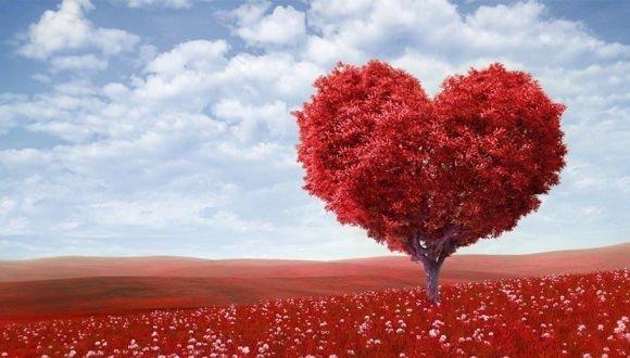 14 şubat Sevgililer Günü Resimli Mesajları Sevgiliye Söylenecek