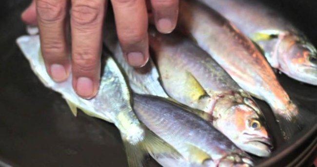 Balık fiyatları çakıldı!