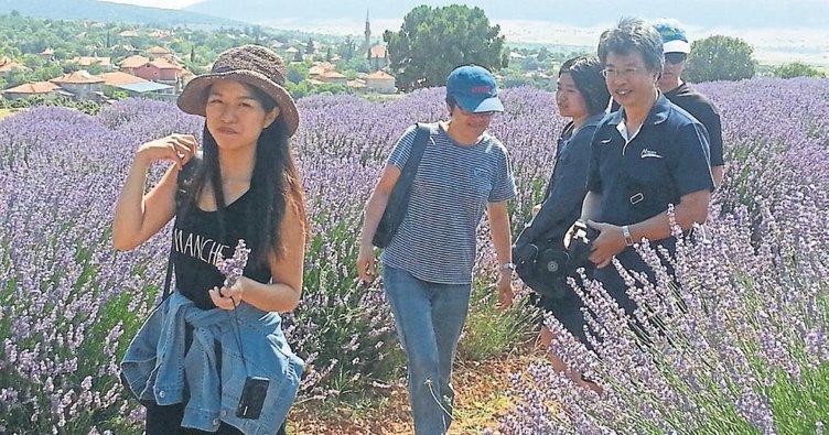 Aromatik bitki turizmi