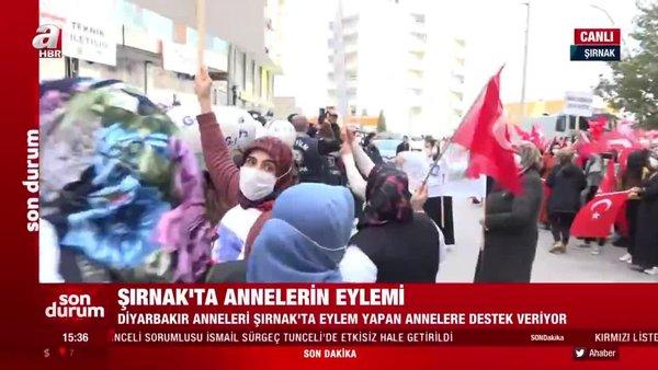 Son dakika! Şırnak'ta HDP ve PKK'ya tepki yürüyüşü! Diyarbakır Anneleri de destek veriyor | Video