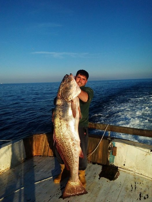 Marmara'da bir ilk... Balıkçılar da şok oldu!