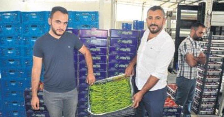 Katar'ın sebzesi Menderes'ten