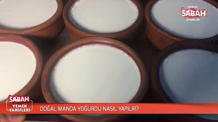 Doğal manda yoğurdu nasıl yapılır?