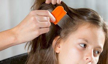 Bit nasıl oluşur? Saç biti nasıl oluşur, nasıl yok edilir?