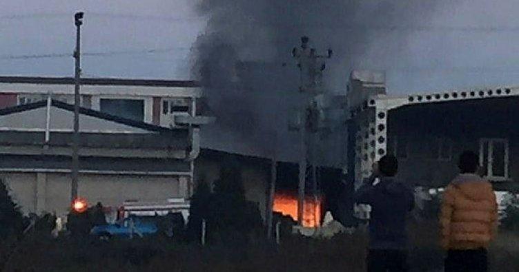 Son dakika: Ordu'da fındık fabrikasında yangın çıktı