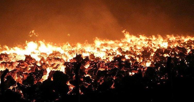 SON DAKİKA HABERİ: Afyonkarahisar'da yangın paniği sürüyor! 80 bin metrekare alan kül oldu