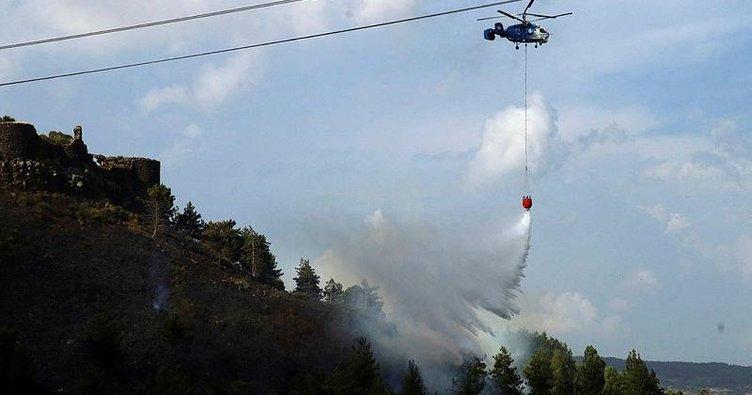 Tarihi Toprakkale Kalesi'de yangın