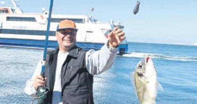 Körfez'de balık bolluğu sürüyor