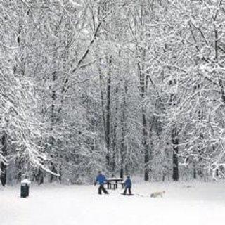 Kuzey Avrupa kar fırtınasına teslim