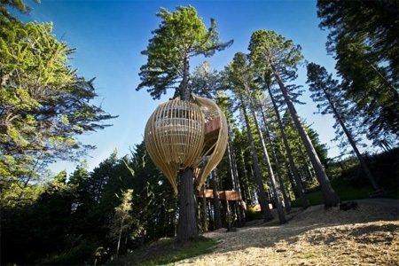 En ilginç ağaç evler...