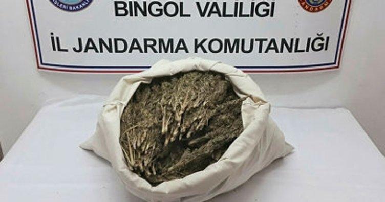 Bingöl'de 10 kilogram esrar ele geçirildi