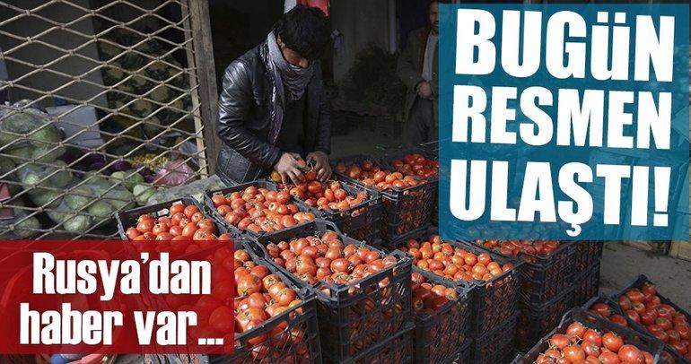 Türkiye'de üretilen domatesler yaklaşık 2 yıl sonra yeniden Rusya'da
