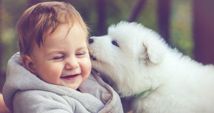 Çocuklarınızı hayvanlarla büyütmek için 7 neden