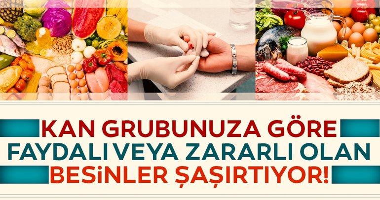 Bakın kan grubunuza hangi besinler faydalı! İşte kan grubuna göre faydalı veya zararlı olan besinler!