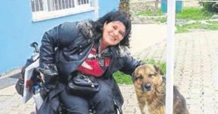Engelli vatandaşlar dostlarını geri istiyor