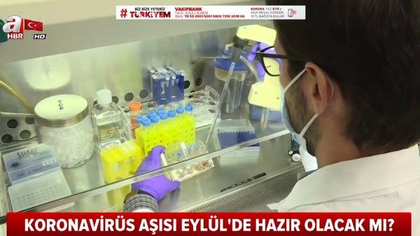 Dünyaya corona virüsü aşısı müjdesi! Corona virüsü aşısı 2020 Eylül ayında...    Video