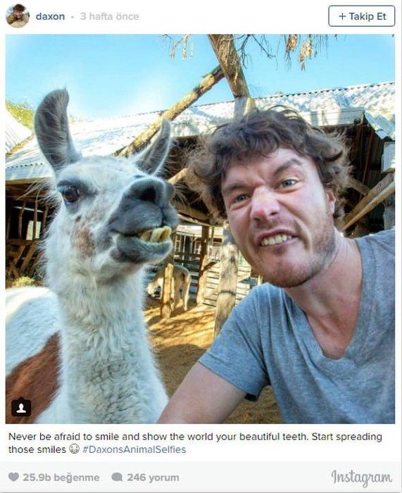 Mesleği hayvanlarla selfie çektirmek