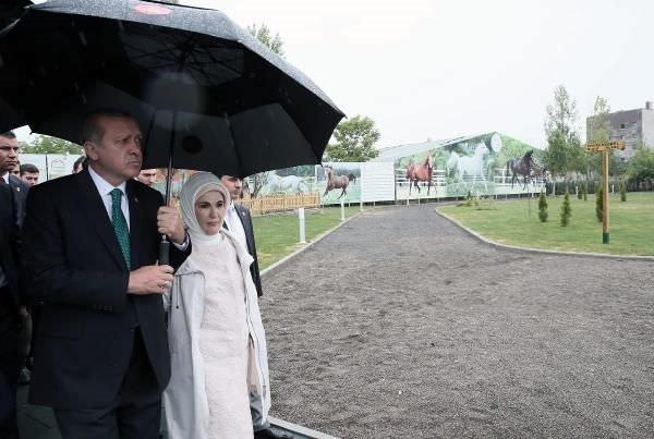 Katar emirinden Cumhurbaşkanı'na 53 Arap atı hediyesi